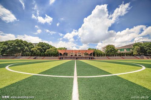 爱护校园一草一木
